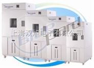 BPH-250C高低温试验箱