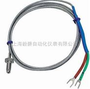 WZPM-121端面热电阻