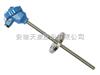 防爆鉑熱電阻型號WZP,價格及參數