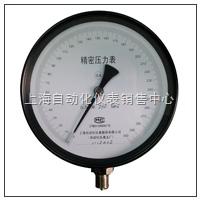 YB-200系列 精密压力表