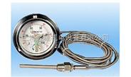 WTZ-280压力式温度计(继电器),WTZ-280-100BF压力式温度计(继电器)