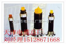音频电缆ZRC-HYA23-20×2×0.6音频电缆ZRC-HYA23-20×2×0.6