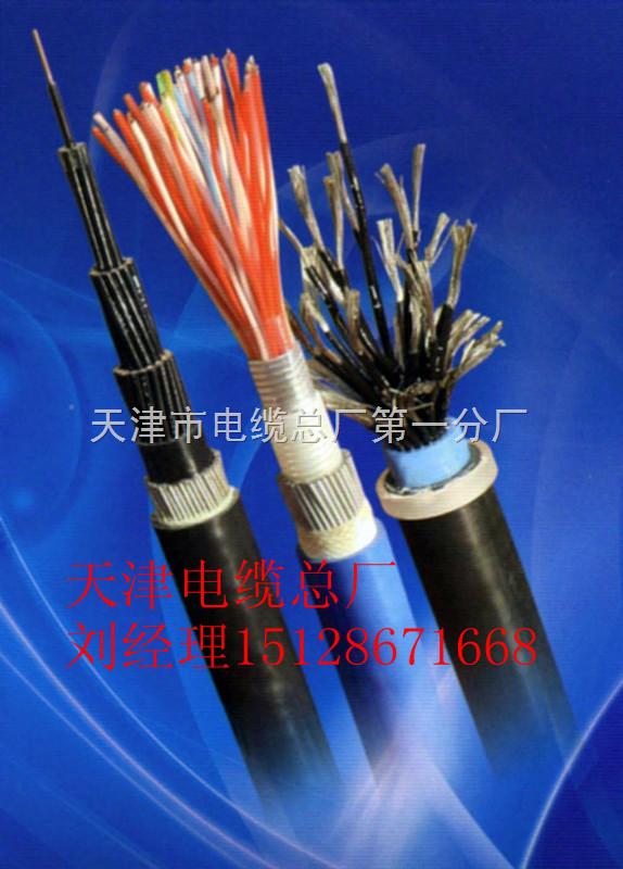 ZR-KVV阻燃铠装屏蔽控制电缆ZRKVVP22;ZRKVVRP22