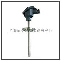上仪集团 热电偶 WRE-430