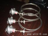 WRNK2-136双支铠装熱電偶