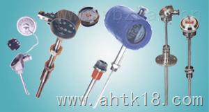 WREB-240 天康一体化温度变送器