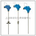 热电阻 WZPK-436S WZPK2-436S