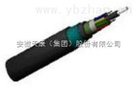 GYTA53GYTA53光缆