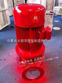 消防泵,XBD-ISG消防泵,XBD机械密封消防泵,XBD5/5-65ISG立式消防泵