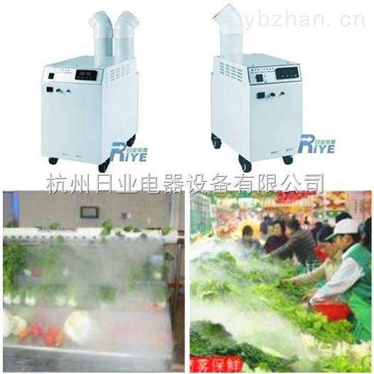 蔬菜库房加湿器