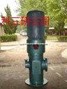 HG20-3GF-螺桿泵 小型螺桿泵