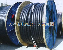 CEFRP电缆CEFRP电缆商