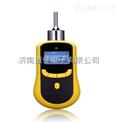 泵吸式二氧化碳檢測儀,二氧化碳泄漏檢測儀