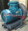防爆真空泵/高壓防爆氣泵/防爆氣泵價格