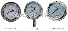 YZ--YNYZ--YN耐振耐高温压力表