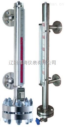 高压磁浮子液位计,高压远传磁浮子液位计价格,高压远传磁浮子液位计厂家
