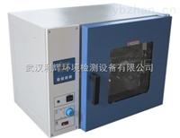 DHG系列全自动干燥箱