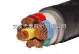 耐高温阻燃电力电缆 FG22
