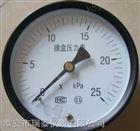 膜盒壓力表YE-100B