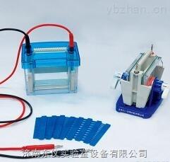 DYCZ-24DN型-六一 DYCZ-24DN型迷你双垂直电泳仪(小号)