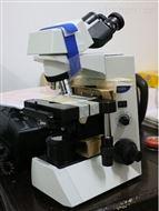 昆山/奥林巴斯生物显微镜CX31