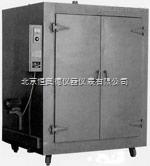 大型鼓风干燥箱  XZ-DF