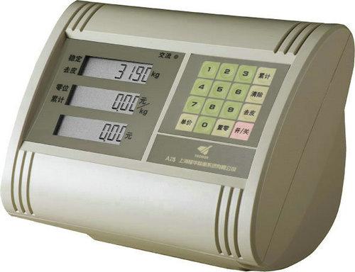 XK3190-A25系列
