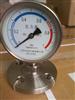 不锈钢压力表  不锈钢压力表厂家 YTP-100不锈钢压力表