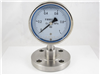 YNMF-150 YNMF-100隔膜式压力表
