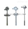 WRE-430NM/WRE2-430NM耐磨热电偶WRE-430NM/WRE2-430NM生产厂家/价格/供应商