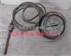 WTZ-208压力式温度计好的厂家-江苏润仪