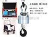 杭州电子吊秤/蓝箭电子吊秤/耐高温电子吊秤