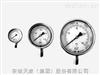 YW—系列耐温压力表
