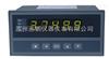 提供XSE增强型单输入通道仪表